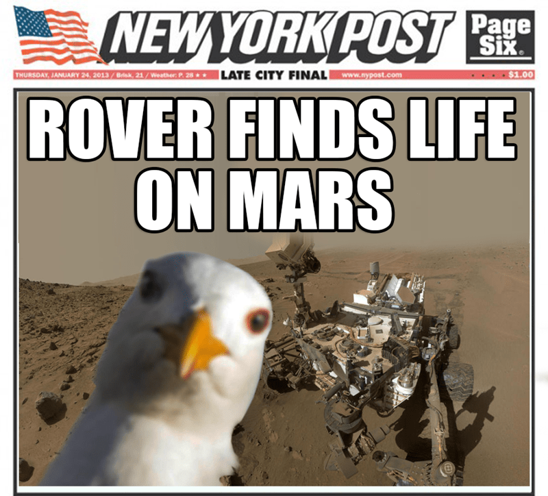 Bird - NEWYORK POST Page Six THURSDAY, JANUARY 24, 2013/Brik, 21/Weather: P. 28 LATE CITY FINALwww.nypost.com $1.00 ROVER FINDS LIFE ON MARS MAA