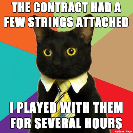 Cat - THE CONTRACT HAD A FEW STRINGS ATTACHED I PLAYED WITH THEM FOR SEVERAL HOURS made on imgur
