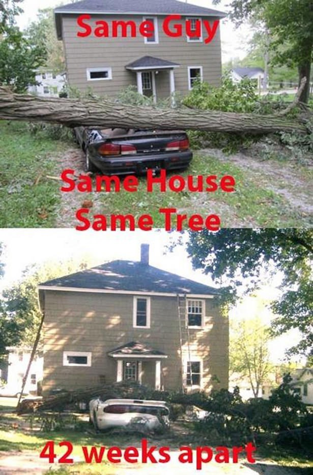 Vehicle - Same Ga Same House Same Tree 42 weeks apart