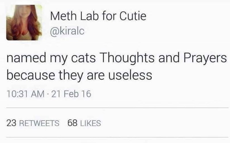 "Tweet that says, ""Named my cats Thoughts and Prayers because they are useless"""