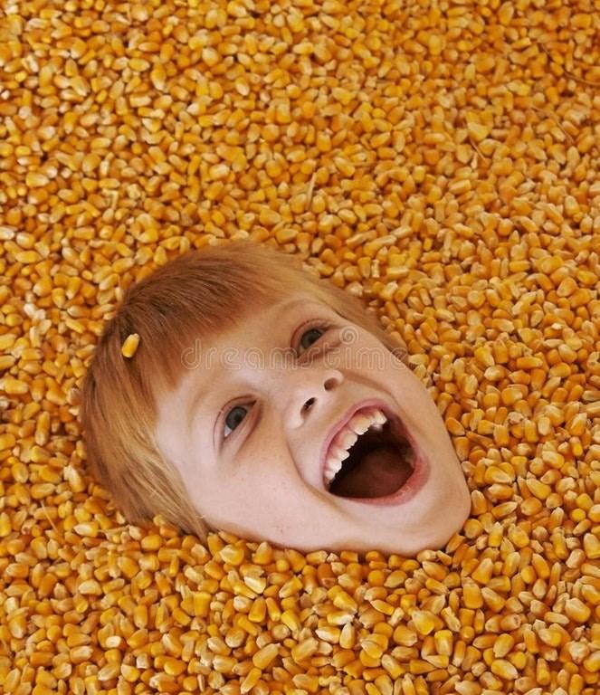 Cheezburger Image 9162577920