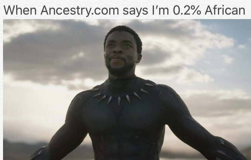 Funny meme about black panther.