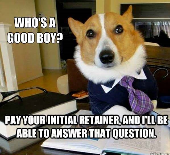 Dog - WHO'S A GOOD BOY? PAY YOUR INITIAL RETAINER ANDULLBE ABLE TOANSWER THAT QUESTION quickmeme.com