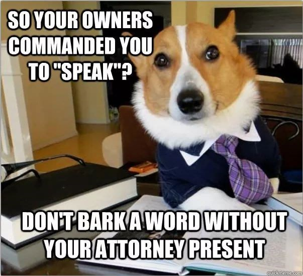 "Dog - SO YOUR OWNERS COMMANDED YOU TO ""SPEAK ""? DONT BARKAWORDWITHOUT YOUR ATTORNEY PRESENT qutckmeme.com"