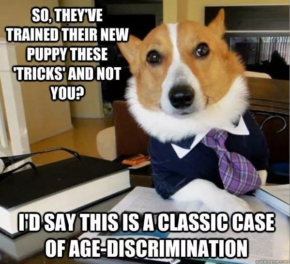 Dog - SOTHEY'VE TRAINED THEIR NEW PUPPY THESE TRICKS' AND NOT YOU? HD SAY THIS IS A CLASSIC CASE OF AGE-DISCRIMINATION quickmeme.com