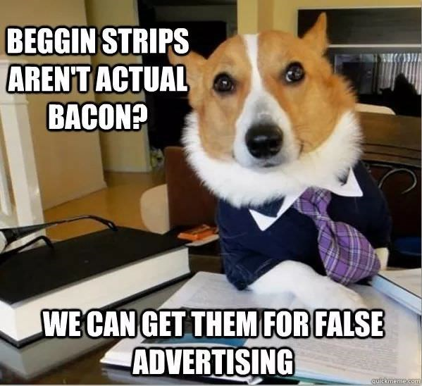 Dog - BEGGIN STRIPS ARENT ACTUAL BACON? WE CAN GET THEM FOR FALSE ADVERTISING quickmeme.com