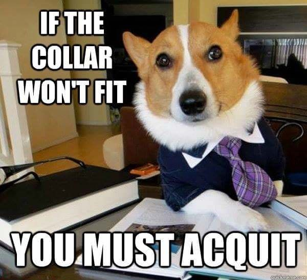 Dog - IF THE COLLAR WON'T FIT YOU.MUST ACQUIT qurckmeme.com
