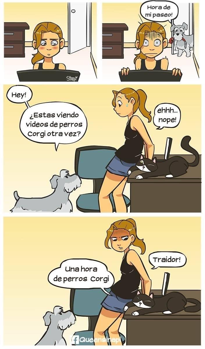 chica engana a su perro buscando otro