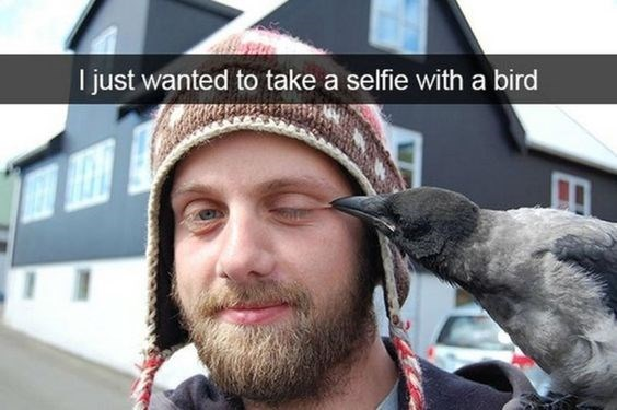 snapchat - Facial hair - I just wanted to take a selfie with a bird