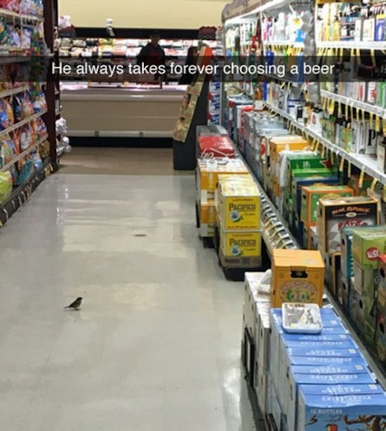 snapchat - Supermarket - He always takes forever choosing a beer PACFIC A Adez. 12 BOTTLES