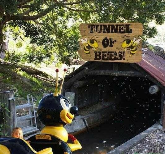 """Small child going through a ride called """"Tunnel of Bees"""""""