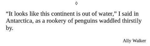"""Text - """"It looks like this continent is out of water,"""" I said in Antarctica, as a rookery of penguins waddled thirstily by. Ally Walker"""