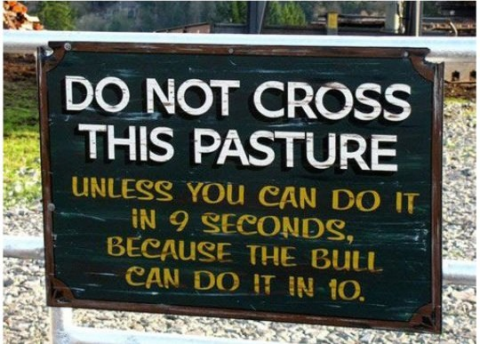 Nature reserve - DO NOT CROSS THIS PASTURE UNLESS YOu CAN DO IT iN 9 SECONDS, BECAUSE THE BULL CAN DO IT IN 10.