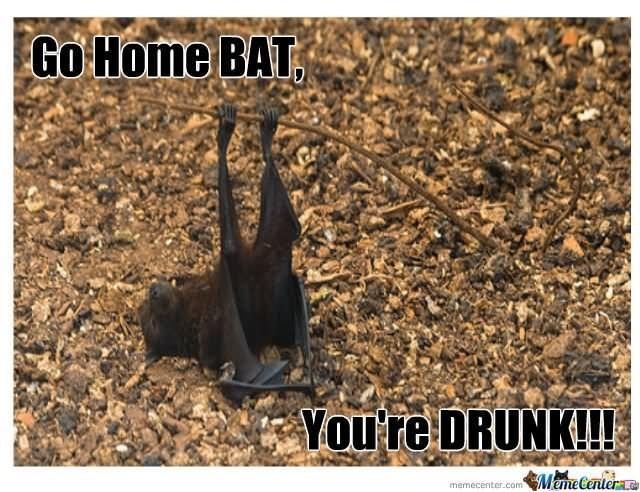 meme - Soil - Go Home BAT Youre DRUNK!! Mame Center memecenter.com