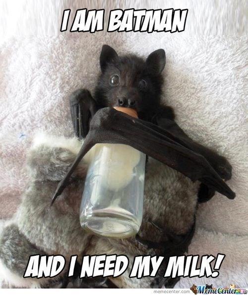 meme - Photo caption - IAM BATMAN ANDI NEED MY MILK! MemeCenter memecenter.com