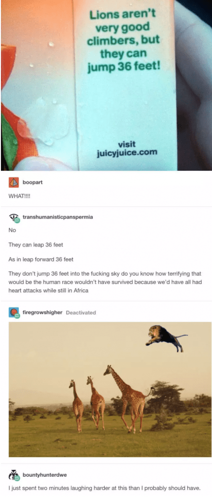 Text - Lions aren't very good climbers, but they can jump 36 feet! visit juicyjuice.com boopart WHAT!!! transhumanisticpanspermia No They can leap 36 feet As in leap forward 36 feet They don't jump 36 feet into the fucking sky do you know how terrifying that would be the human race wouldn't have survived because we'd have all had heart attacks while still in Africa firegrowshigher Deactivated bountyhunterdwe I just spent two minutes laughing harder at this than I probably should have.