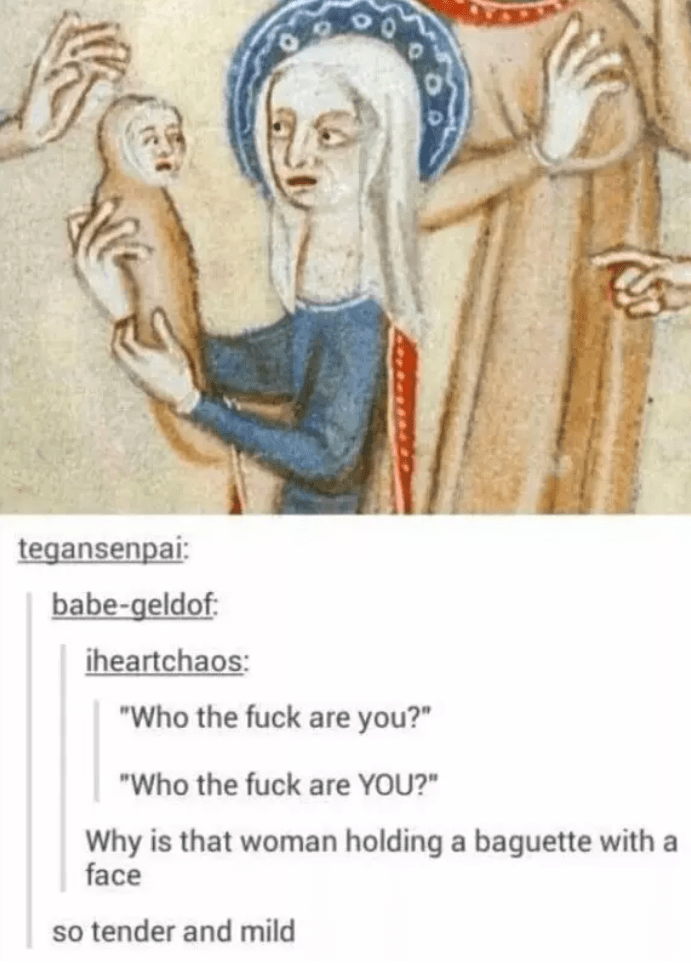 """Text - tegansenpai: babe-geldof iheartchaos: """"Who the fuck are you?"""" """"Who the fuck are YOU?"""" Why is that woman holding a baguette with a face so tender and mild"""