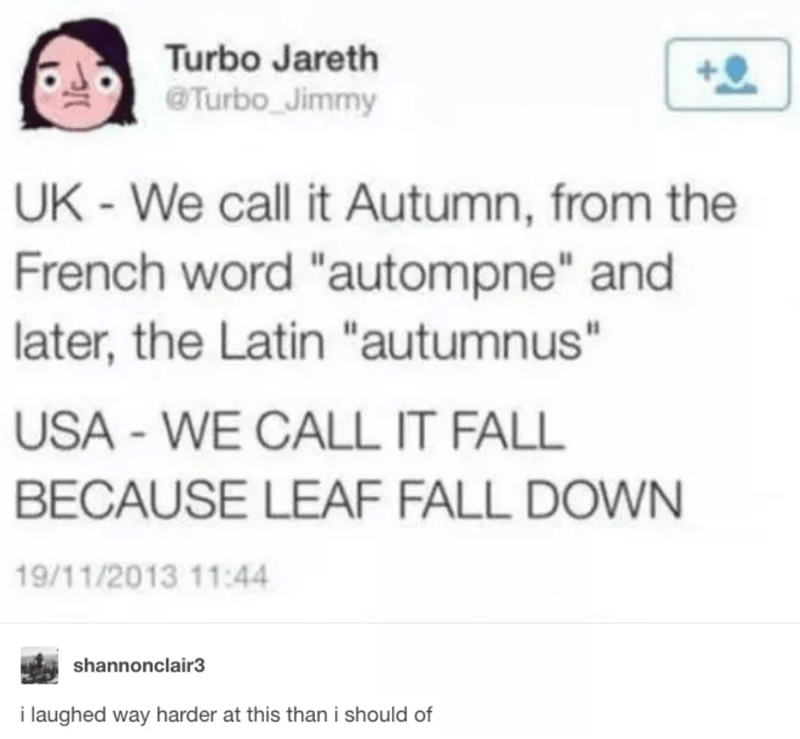 """Text - Turbo Jareth @Turbo Jimmy UK-We call it Autumn, from the French word """"autompne"""" and later, the Latin """"autumnus"""" USA - WE CALL IT FALL BECAUSE LEAF FALL DOWN 19/11/2013 11:44 shannonclair3 i laughed way harder at this than i should of"""