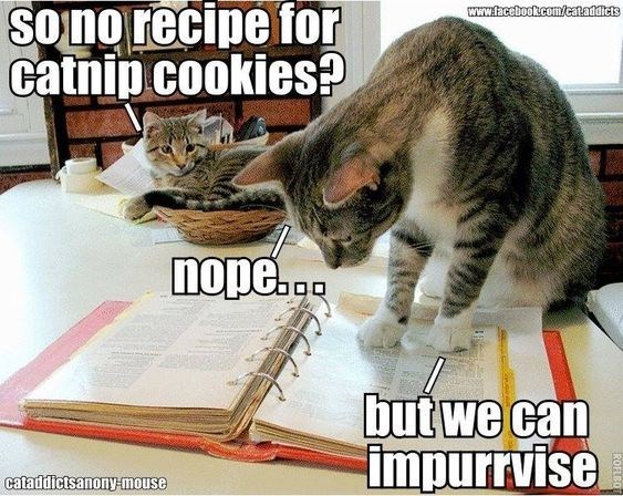 Cat - Sono recipe for catnip cookies? www.facebook.com/cataddicts nope... but we can impurrvise cataddictsanonymouse ROFLBO