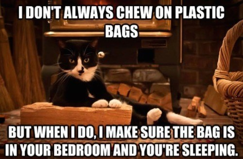 Photo caption - I DON'T ALWAYS CHEW ON PLASTIC BAGS BUT WHENI DO,IMAKE SURE THE BAG IS IN YOUR BEDROOM AND YOU'RE SLEEPING.