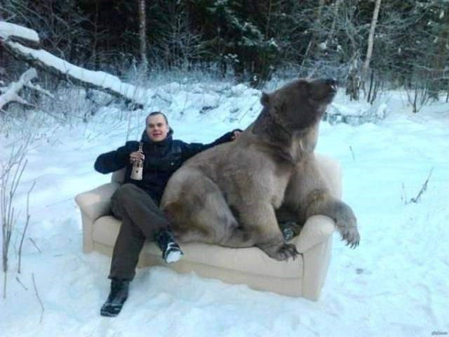 man sitting with a bear on a couch in the snow and drinking beer