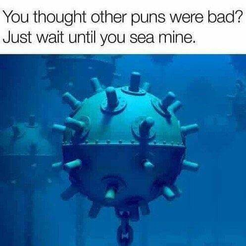 pun - Organism - You thought other puns were bad? Just wait until you sea mine.
