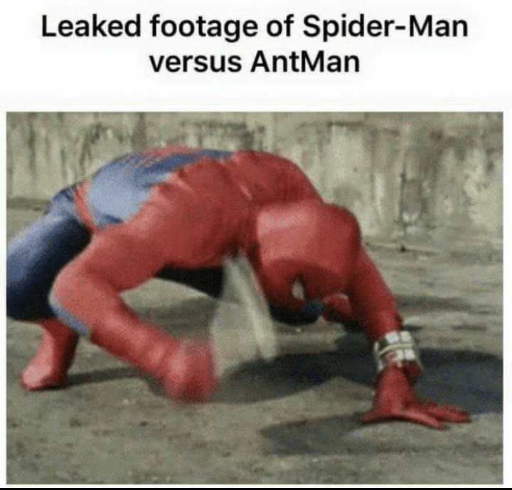 Funny meme about spider-man and antman.