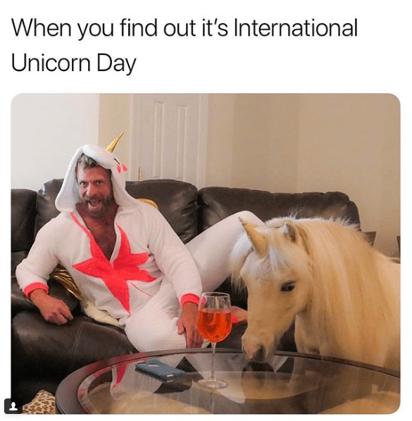 Horse - When you find out it's International Unicorn Day