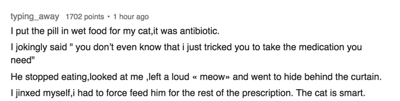 """Text - typing_away 1702 points 1 hour ago I put the pill in wet food for my cat,it was antibiotic. I jokingly said """" you don't even know that i just tricked you to take the medication you need"""" He stopped eating,looked at me ,left a loud « meow» and went to hide behind the curtain. I jinxed myself,i had to force feed him for the rest of the prescription. The cat is smart."""