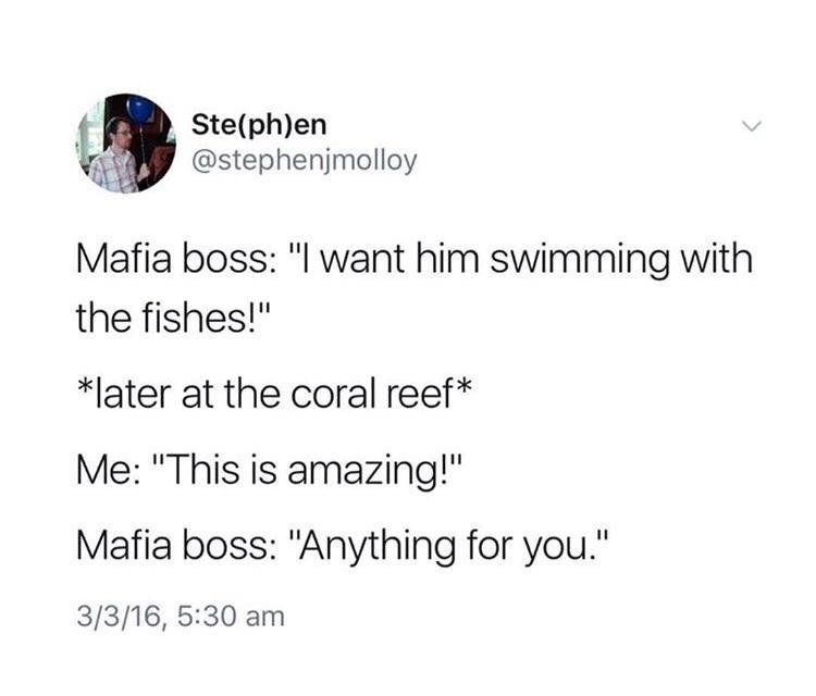 """wholesome meme - Text - Ste(ph)en @stephenjmolloy Mafia boss: """"I want him swimming with the fishes!"""" *later at the coral reef* Me: """"This is amazing!"""" Mafia boss: """"Anything for you."""" 3/3/16, 5:30 am"""