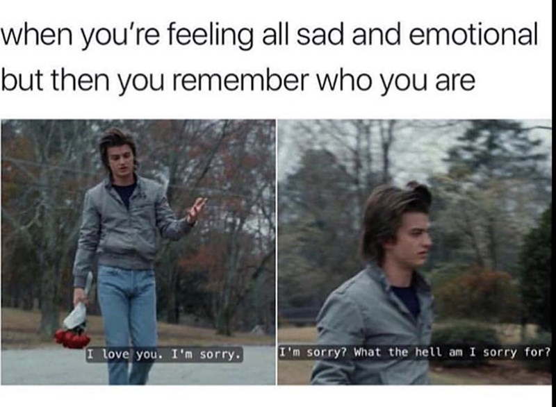wholesome meme - Facial expression - when you're feeling all sad and emotional but then you remember who you are I'm sorry? What the hell am I sorry for? I love you. I'm sorry