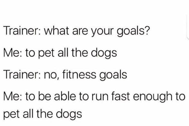 wholesome meme - Text - Trainer: what are your goals? Me: to pet all the dogs Trainer: no, fitness goals Me: to be able to run fast enough to pet all the dogs