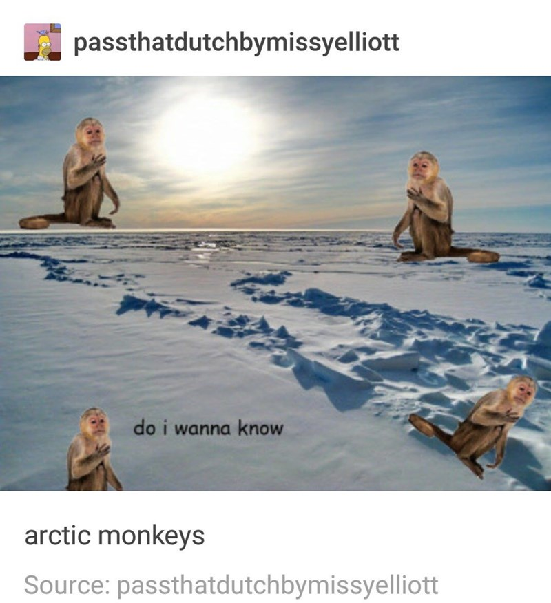 funny tumblr post do i wanna know arctic monkeys Source: passthatdutchbymissyelliott
