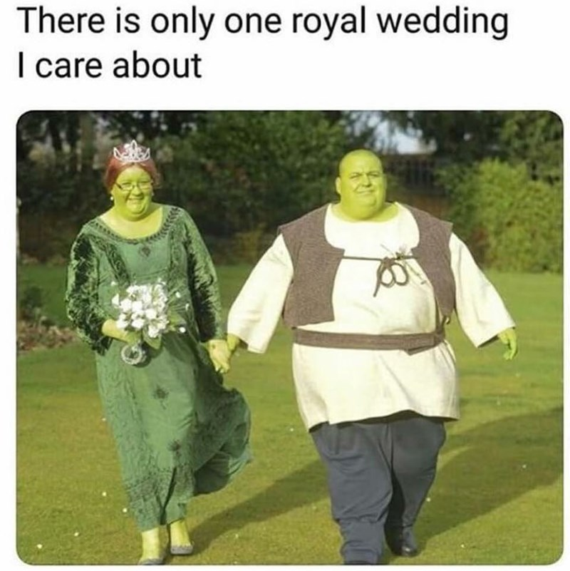 Funny meme about shrek wedding, royal wedding, meghan markle, prince harry, princess fiona, ogres.