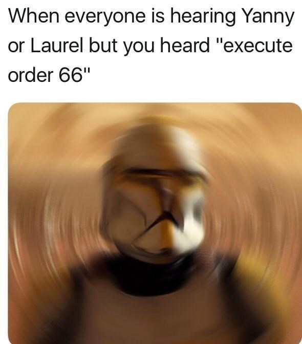 """Text - When everyone is hearing Yanny or Laurel but you heard """"execute order 66"""""""