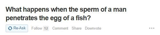 Text - What happens when the sperm of a man penetrates the egg of a fish? O Re-Ask Follow 12 Comment Share Downvote