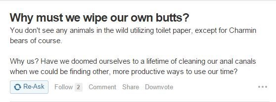 Text - Why must we wipe our own butts? You don't see any animals in the wild utilizing toilet paper, except for Charmin bears of course. Why us? Have we doomed ourselves to a lifetime of cleaning our anal canals when we could be finding other, more productive ways to use our time? O Re-Ask Follow 2 Comment Share Downvote