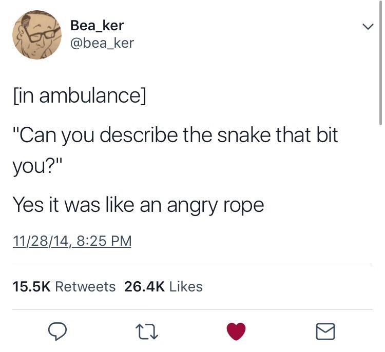 "Text - Bea_ker @bea_ker in ambulance] ""Can you describe the snake that bit you?"" Yes it was like an angry rope 11/28/14, 8:25 PM 15.5K Retweets 26.4K Likes"