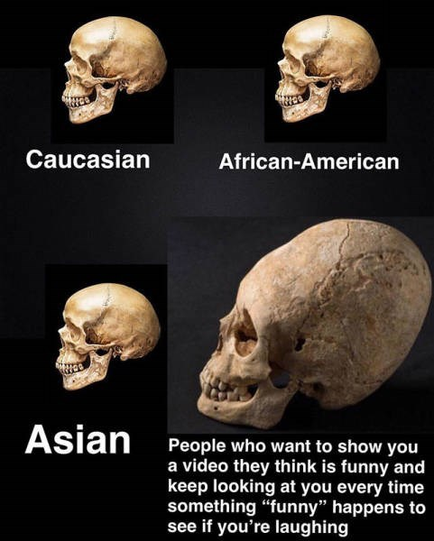 "Skull - Caucasian African-American Asian People who want to show you a video they think is funny and keep looking at you every time something ""funny"" happens to see if you're laughing"