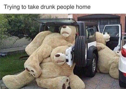 Teddy bear - Trying to take drunk people home