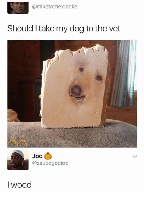 Canidae - @miketotheklocke Should I take my dog to the vet Joc @saucegodjoc I wood