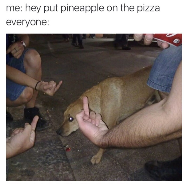 funny meme about dog and pineapple on pizza
