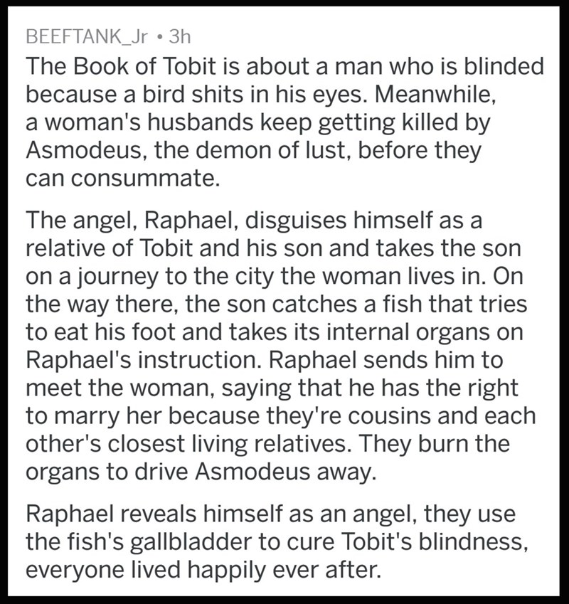 Text - BEEFTANK_Jr 3h The Book of Tobit is about a man who is blinded because a bird shits in his eyes. Meanwhile, a woman's husbands keep getting killed by Asmodeus, the demon of lust, before they can consummate. The angel, Raphael, disguises hiimself as a relative of Tobit and his son and takes the son on a journey to the city the woman lives in. On the way there, the son catches a fish that tries to eat his foot and takes its internal organs on Raphael's instruction. Raphael sends him to meet
