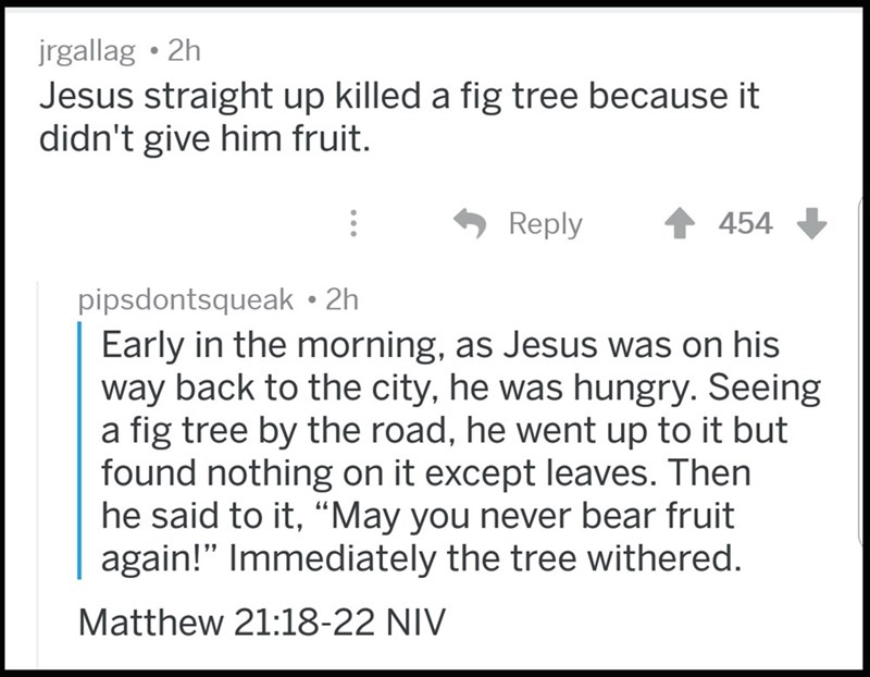 """Text - jrgallag 2h Jesus straight up killed a fig tree because it didn't give him fruit. 454 Reply pipsdontsqueak 2h Early in the morning, as Jesus was on his way back to the city, he was hungry. Seeing a fig tree by the road, he went up to it but found nothing on it except leaves. Then he said to it, """"May you never bear fruit again!"""" Immediately the tree withered. Matthew 21:18-22 NIV"""