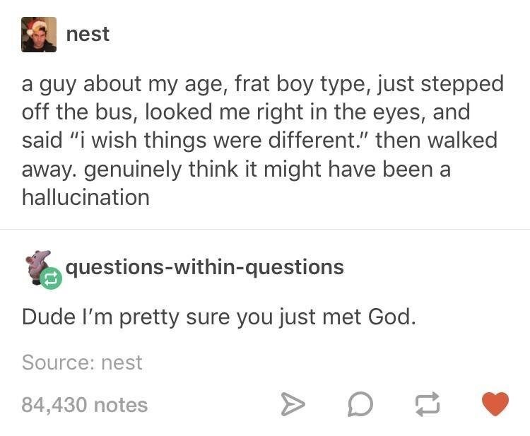"""memes - Text - nest a guy about my age, frat boy type, just stepped off the bus, looked me right in the eyes, and said """"i wish things were different."""" then walked away. genuinely think it might have been a hallucination questions-within-questions Dude I'm pretty sure you just met God. Source: nest 84,430 notes"""