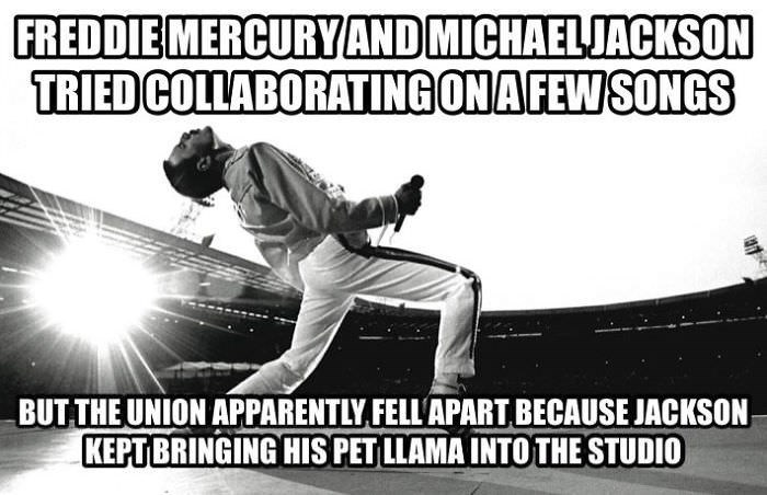Sports - FREDDIE MERCURYAND MICHAELJACKSON TRIED COLLABORATING ONAFEWSONGS BUT THE UNION APPARENTLY FELL'APART BECAUSE JACKSON KEPTBRINGING HIS PET LLAMA INTOTHE STUDIO