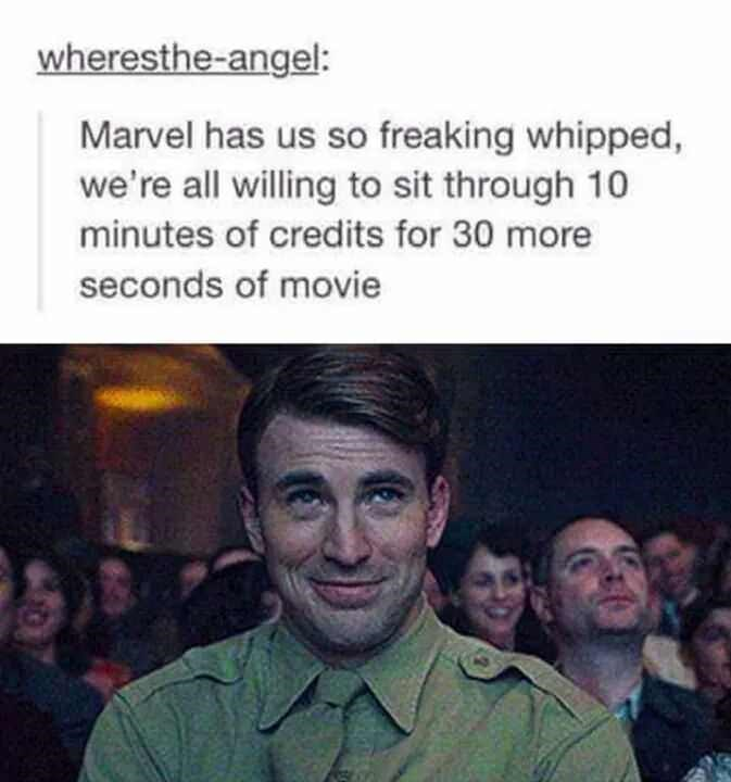 meme - People - wheresthe-angel: Marvel has us so freaking whipped, we're all willing to sit through 10 minutes of credits for 30 more seconds of movie