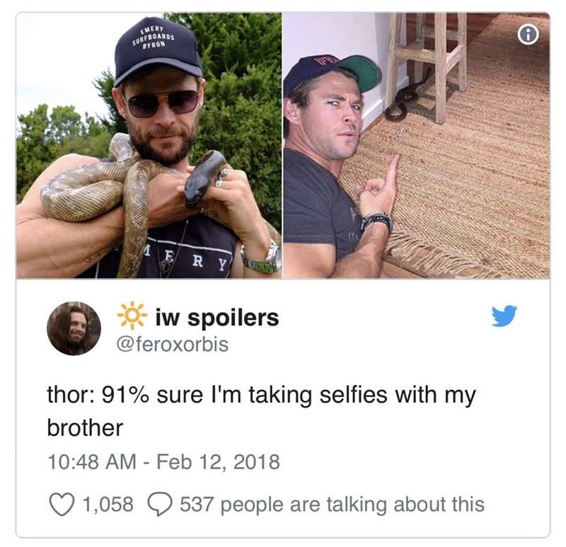 meme - Photography - EMERY SURFBUARDS BYRON R iw spoilers @feroxorbis thor: 91% sure I'm taking selfies with my brother 10:48 AM - Feb 12, 2018 1,058 537 people are talking about this