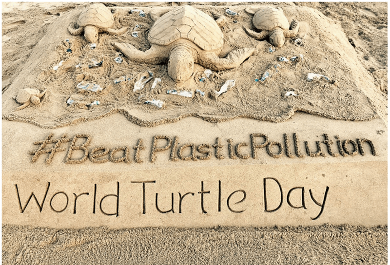 Sand - Beat PlasticPollution World Turtle Day