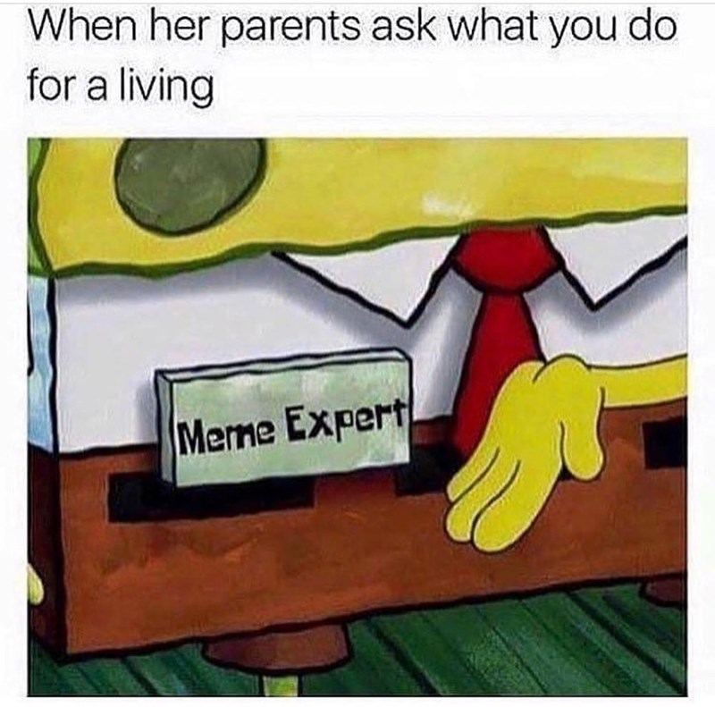 spongebob meme about saying you're a meme expert when people ask what your job is